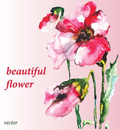beautiful flower: beautiful flower.