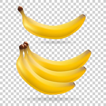 Banana on transparent background. Fruit. Vegetarianism. Vector illustration