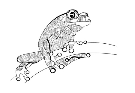 Frog on the branch. Doodle for coloring. Vector.
