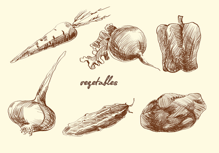 set of vegetables. Sketch. Pencil drawing. Vector 向量圖像