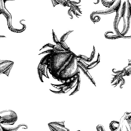 Seamless pattern with crab and octopus. Marine wallpapers. Vector