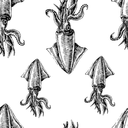 Seamless pattern with squid. Marine wallpapers. Vector