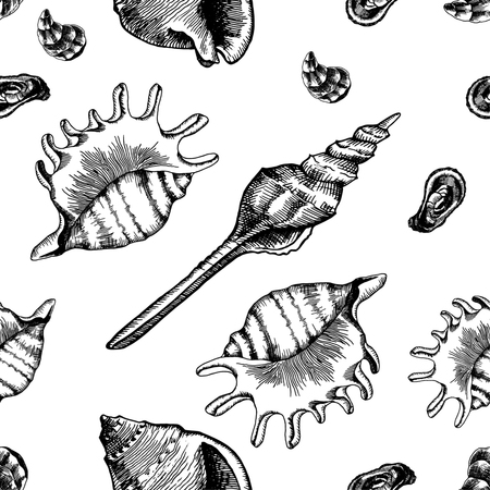 Seamless pattern with seashells. Marine wallpapers. Vector