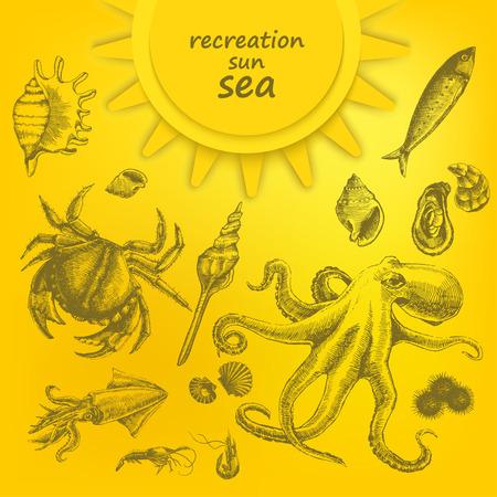 Beautiful marine set on yellow background. Marine residents. Vector
