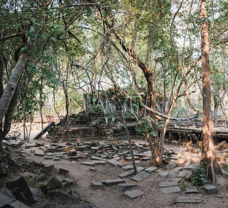 Prasat Beng Mealea in Angkor Complex, Siem Reap, Cambodia. It is largely unrestored, old trees and brush growing amidst towers and many of its stones lying in great heaps. Ancient Khmer architecture.