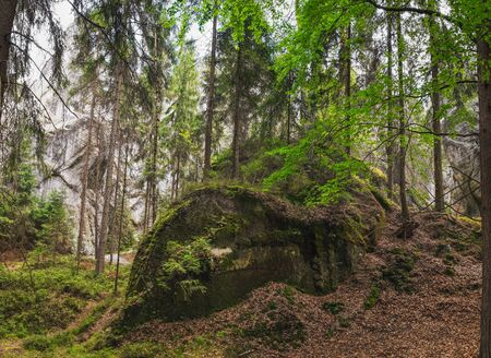 View of famous sandstone rock towers of Adrspach and Teplice Rocks and ancient pines growing between them. Adrspach National Park in northeastern Bohemia, Czech Republic, Europe Imagens