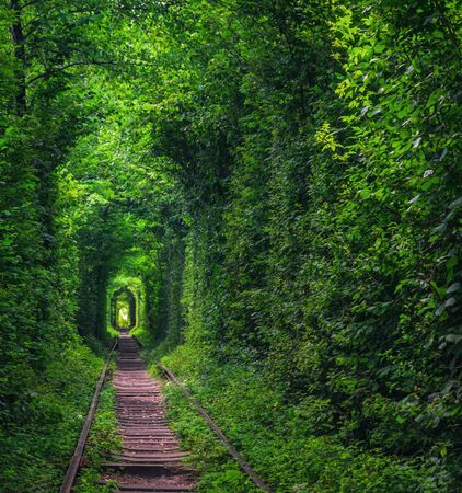 Magic Tunnel of Love near Klevan, Ukraine. Green trees and old railway line