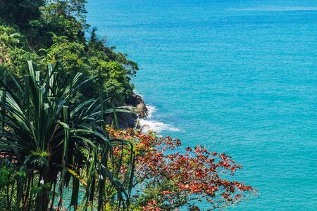 Picturesque top view to the tropical trees on the rocky beach and blue sea, Khao Lak, Thailand