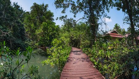 Tha Pom Klong Song Nam or Emerald Pool in Krabi Province, Thailand. Beautiful nature landscape with tranquil mangrove swamp, canals, tropical trees and wooden road through them