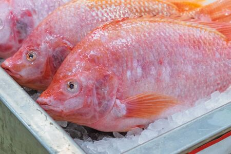 Raw Red Tilapia Fish putting and freeze on ice for sale at the seafood and fish market in Thailand. Animal for food, ingredient. Stock Photo