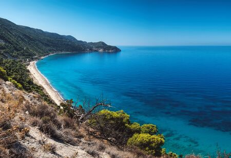 Beautiful turquoise color of sea water is seen through the foliage of trees on Pefkoulia Beach, Lefkada island, Greece. Idyllic sunny day. Stock Photo