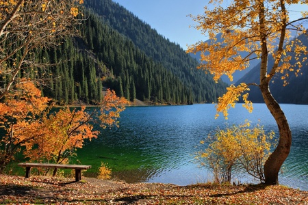 Autumn coast of the mountain lake Kolsai, Kazakhstan photo