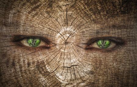 lifespan: green human eye on a wood