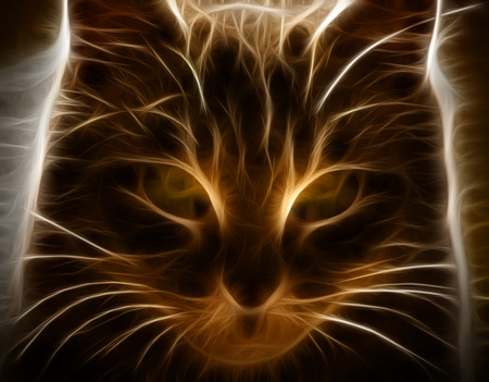 Fractal Cat Illustration