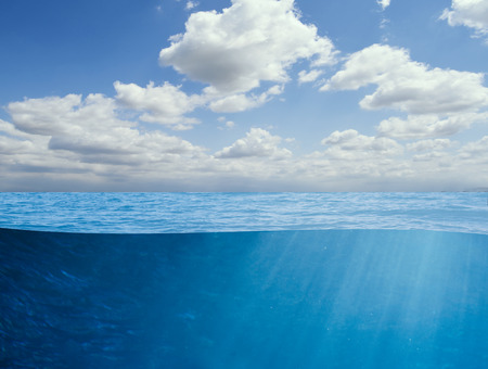 fondali marini: oceano sfondo subacqueo