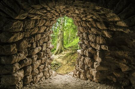 Tunnel entrance in the Forest Stock Photo