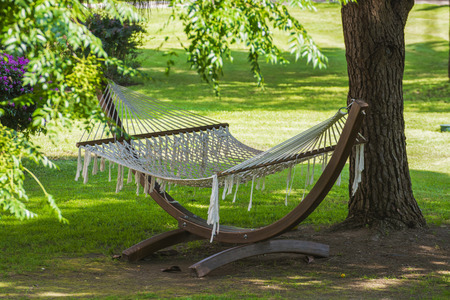 View of hammock  on a sunny summer day photo