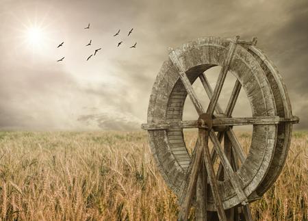 molino de agua: Molino de agua y trigo granja