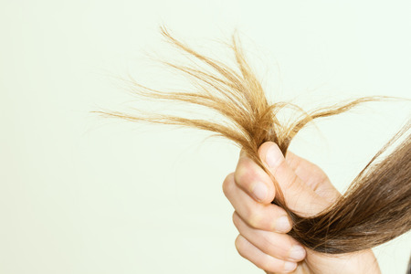 the split: female ends of hair care problems