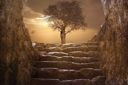2 階で夕日冬ツリー 写真素材