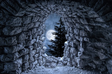 deserted: Dark gothic ruins with fullmoon