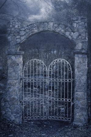 verjas: Mystic Gate vieja en el crepúsculo aa niebla