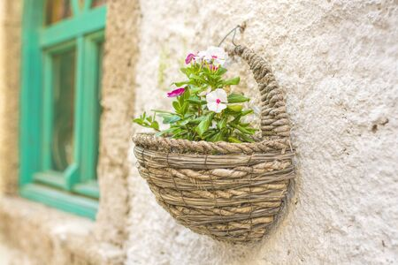 flowerpots: Flowerpot on the wall