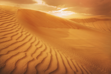 desierto del sahara: desierto de arena, puesta del sol sobre el desierto de los Emiratos Árabes Unidos, Dubai Foto de archivo
