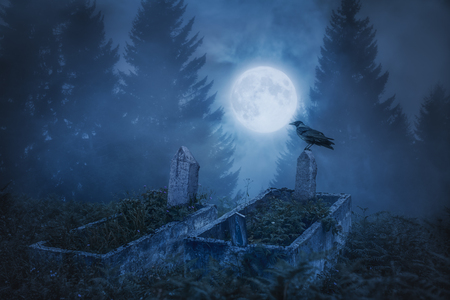 Crow sitting on a gravestone in moonlight Archivio Fotografico
