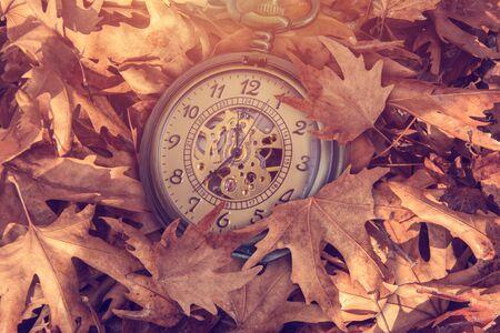 timekeeping: Pocket watch on leaves