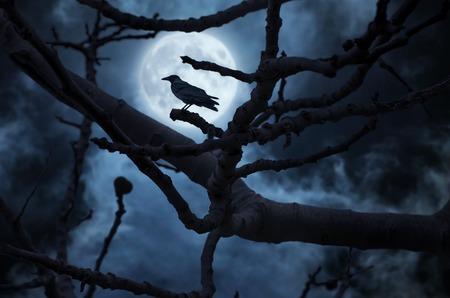 noche y luna: Luna detrás del árbol y un cuervo en él.
