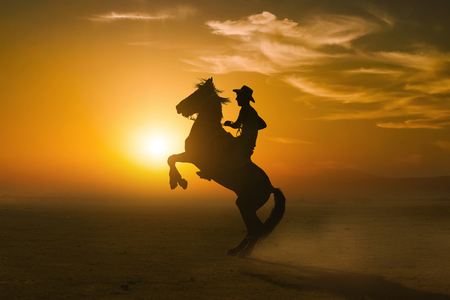 silhouette riding a horse on sunset background Stock Photo
