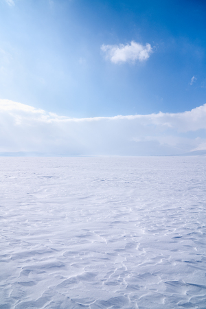 Field, covered with pure snow in the winter season in the background a blue sky 版權商用圖片