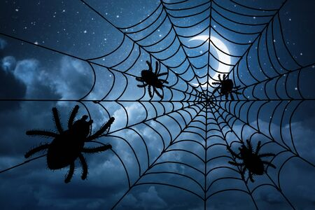 In the middnight under spooky moon spiders are celebrating Halloween.