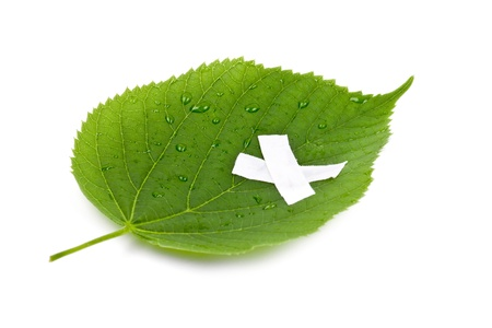 Save the nature  Ecology nature or environmental concept with green leaf and band aid on white Stock Photo