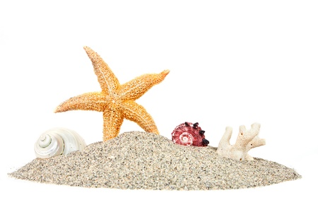 sea stars: Beach with sand starfish and shells isolated over white. summer background Stock Photo