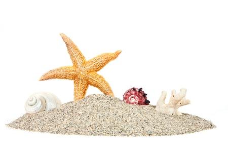 Strand mit Sand Seesterne und Muscheln auf weißem isoliert. Sommer Hintergrund Standard-Bild