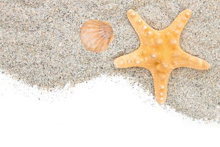 Beach with sand and starfish isolated on white