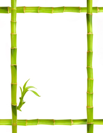 Bamboo frame isolated on white photo