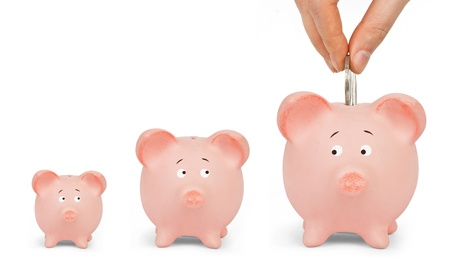 deserve: I deserve it! Growing Investment - Piggy Bank on a white background