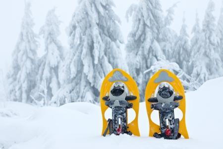 Racchette da neve nella neve in montagna d'inverno