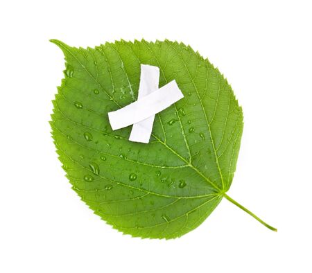 environmental issue: Save the nature. Ecology nature or environmental concept with green leaf and band aid on white
