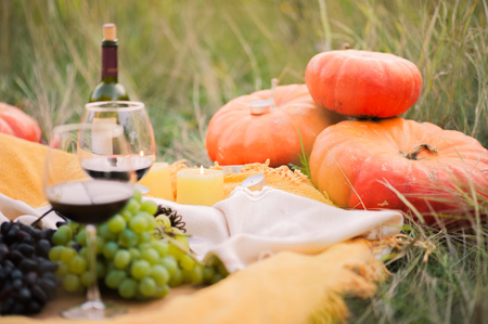 Concept of the Autumn Festival Halloween. Autumn picnic in nature with glasses of wine, grapes, pumpkins in the background