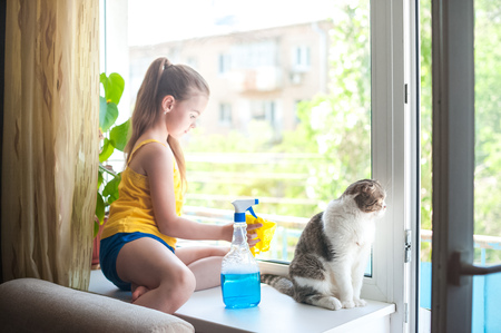 A little girl with a cat. Focus on the British Shorthair cat