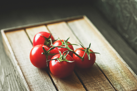 Close up and copy space. Tomatoes on a dark background, toned photo