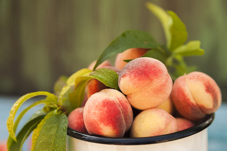 Homemade peaches with leaves in an enamelled white mug and copy space. Beautiful juicy ripe peaches.