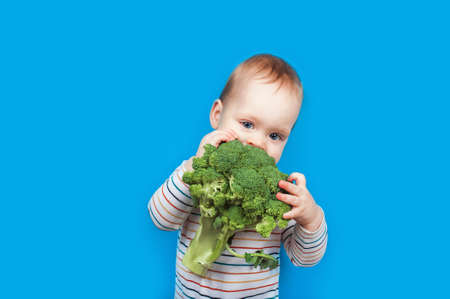 Todler with broccoli on blue background, healthy baby food. Complementary feeding of child with vegetables.