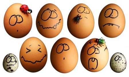 Set of funny eggs photo