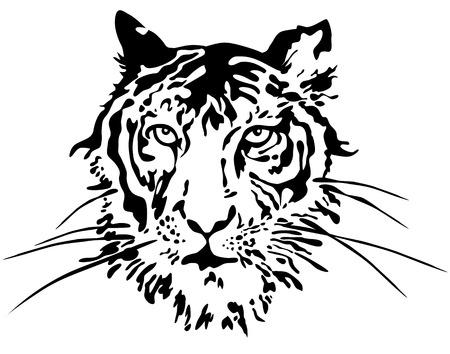 Tiger face  Vector Vector