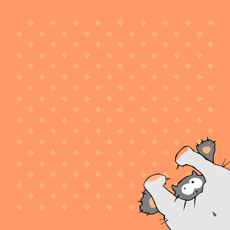 baby background: background in peach color with funny cat.